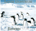 Buy the 2004 Louis Guntrum Penguin Eiswein
