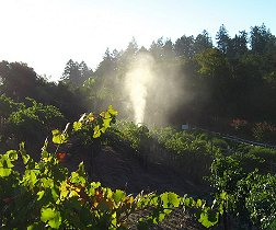 Benziger Biodynamic Spraying (click to enlarge)