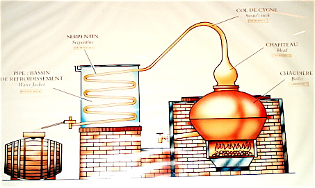 Process of Distillation (Click Image to Enlarge)