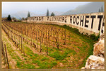 The Vineyard for Alexandre Rochette Wine