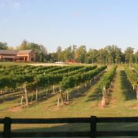 The Vineyard at New Kent Winery